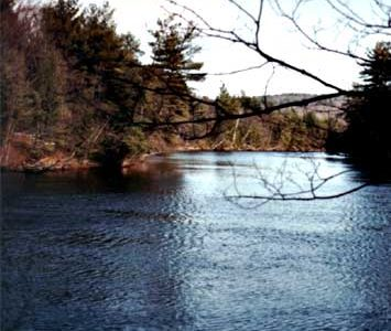 Sink or Swim: The Curse of the Saco River