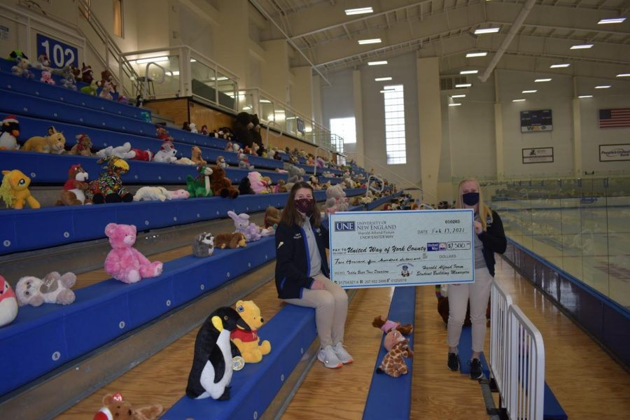 Teddy bears line the stands at the Harold Alfond Forum.