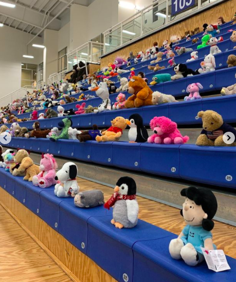 The Forum Bleachers packed with Teddy's in attendence for the game.